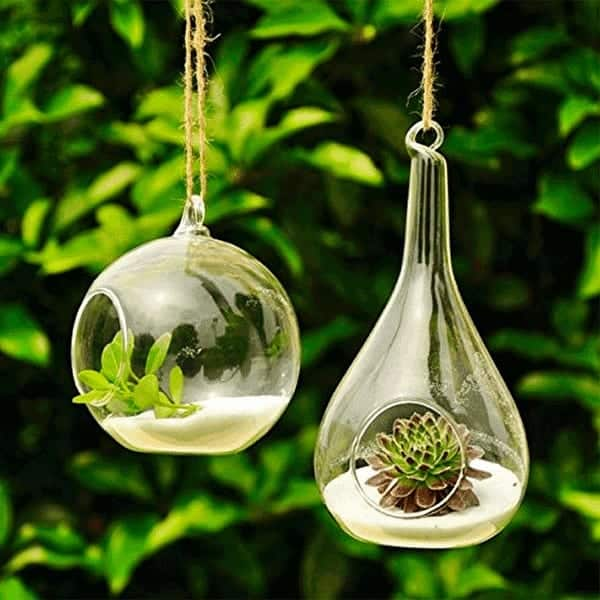 glass-hanging-terrarium-orb-teardrop